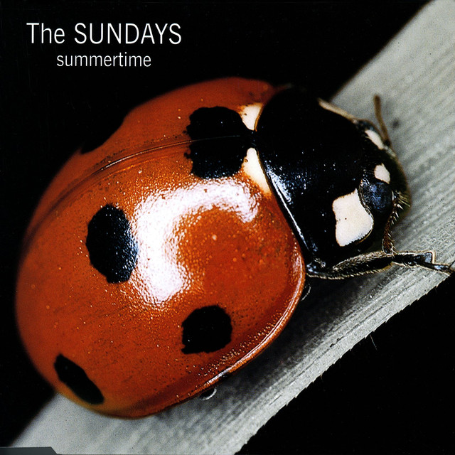 Reading writing and arithmetic the sundays album