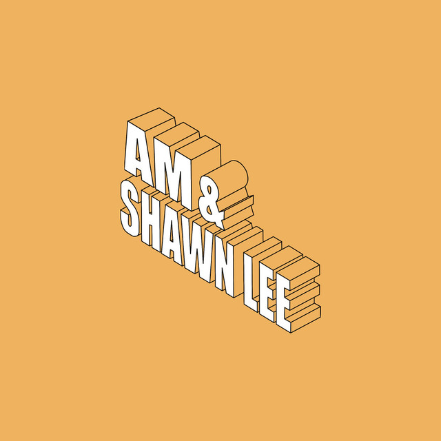 AM, Shawn Lee - You Are In My System image cover