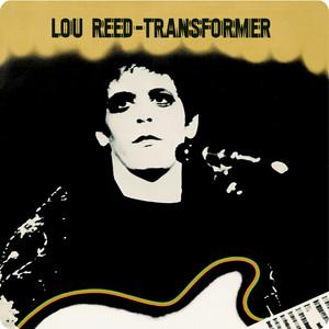 Transformer cover