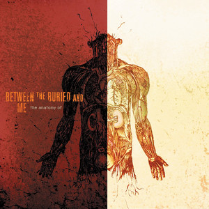 The Anatomy Of - Between The Buried And Me