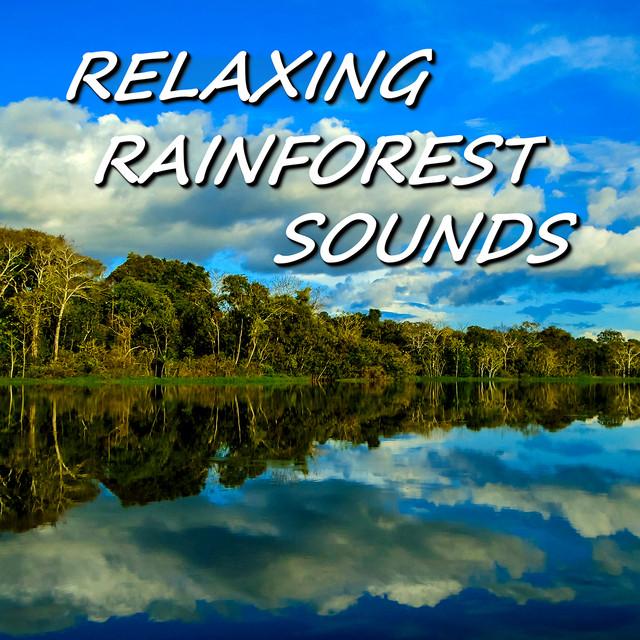 Tropical Rainforest Sounds, a song by Relaxing Rainforest