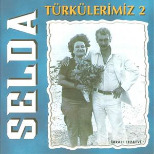 Türkülerimiz 2 - Mehmet Emmi Albümü