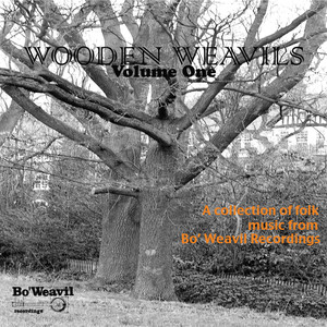 Wooden Weavil Volume 1 (collection of folk music from Bo' Weavil Recordings) album