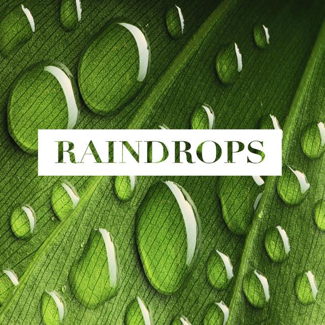 Raindrops Albumcover