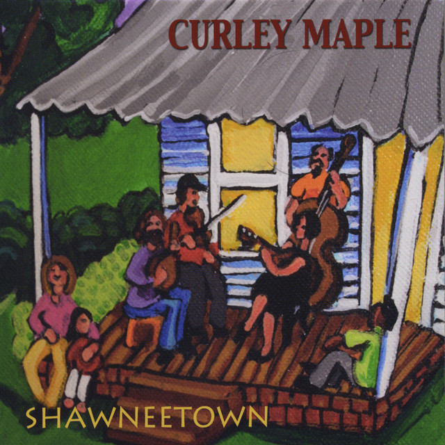 Curley Maple