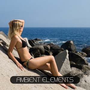 Ambient Elements Albumcover