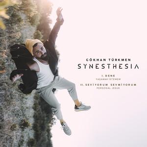 Synesthesia Albümü