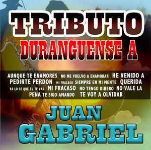 Tributo Duranguense Albumcover