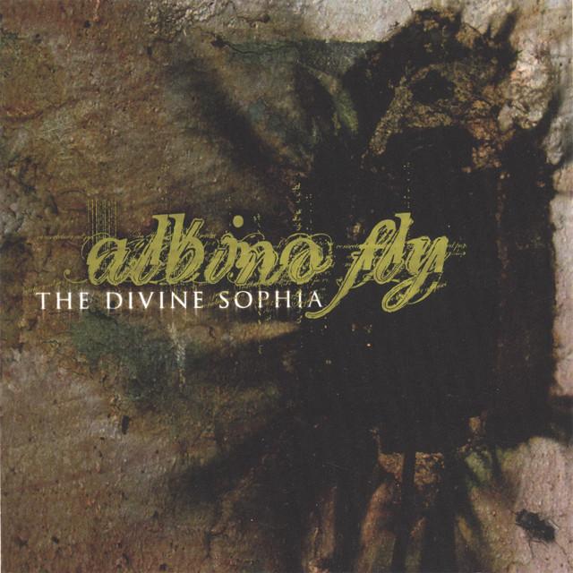 Albino Fly
