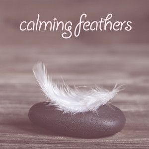 Calming Feathers Albumcover