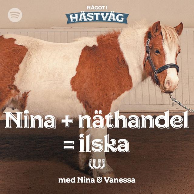Nina + näthandel = ilska