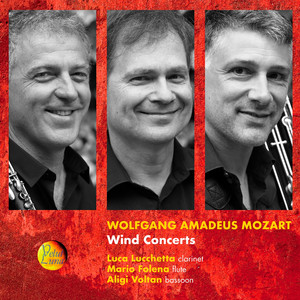 Wolfgang Amadeus Mozart: Wind Concerts Albümü