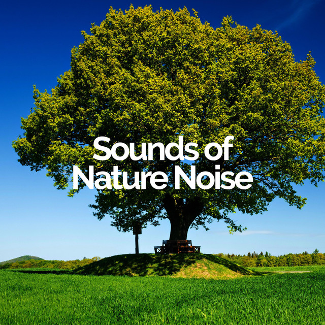 Sounds of Nature Noise