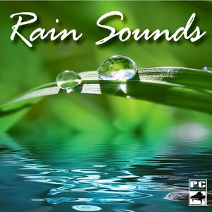 Rain Sounds Albumcover