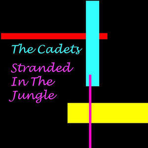 Stranded in the Jungle album