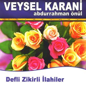 Veysel Karani Albümü