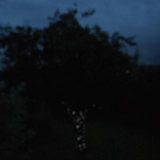 Nuages Artist | Chillhop