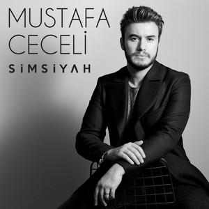 Simsiyah Albümü