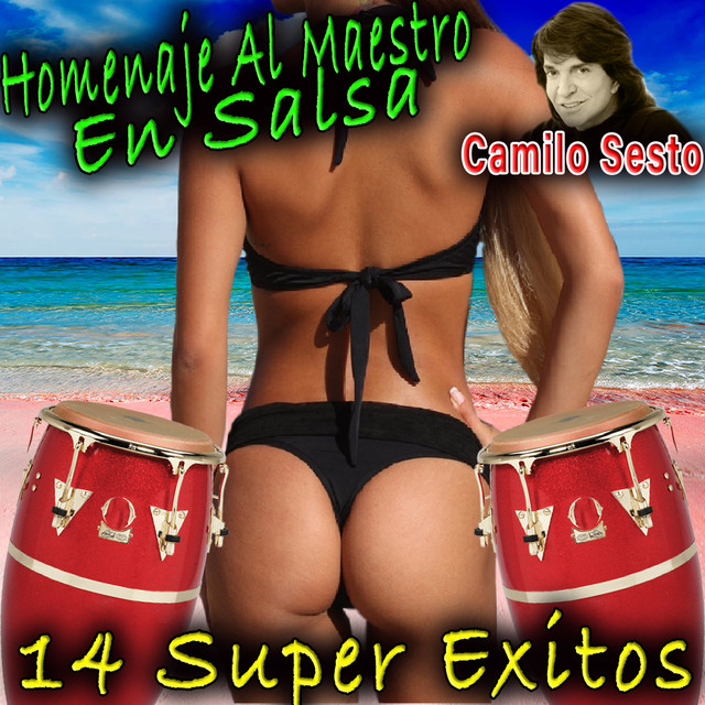 Album cover for Homenaje Al Maestro En Salsa by Camilo Sesto