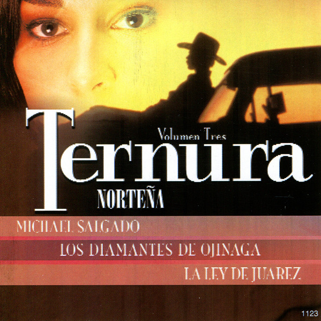 Ternura Norteña, Vol. 3