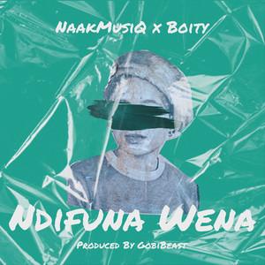 Ndifuna Wena