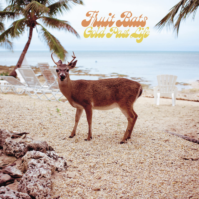 Album cover for Gold Past Life by Fruit Bats