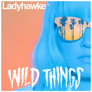 Wild Things (Radio Edit)