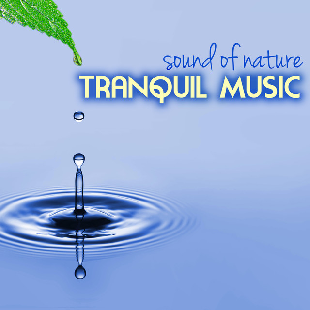 Tranquil Music - Sound of Nature Relaxation Soundscapes Albumcover