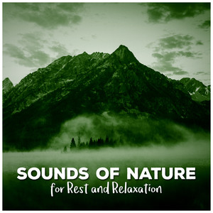 Sounds of Nature for Rest and Relaxation Albümü