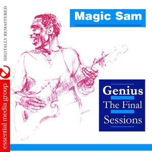 Genius - The Final Sessions (Digitally Remastered) album