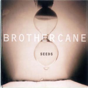 Seeds album
