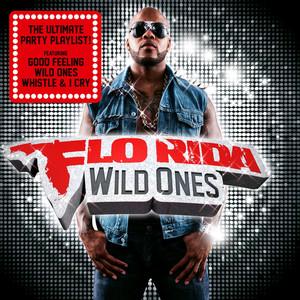 Flo Rida Avicii Good Feeling cover