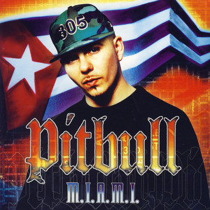 Pitbull, Mr. Vegas, Lil Jon Culo Miami Mix cover
