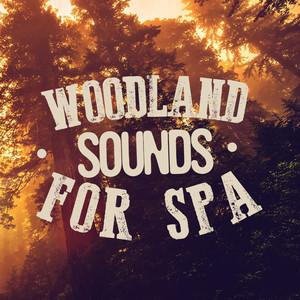 Woodland Sounds for Spa Albumcover