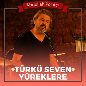 Türkü Seven Yüreklere (Unutulmayan Türküler) Albümü