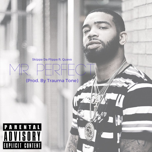 Mr. Perfect (feat. Quavo)
