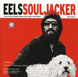 Souljacker album