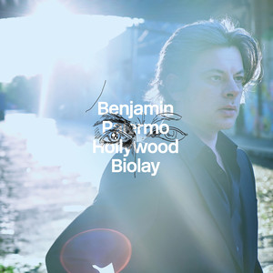 Benjamin Biolay Miss Miss cover