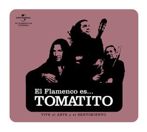 Flamenco es...Tomatito
