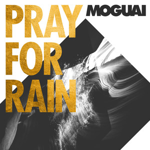 Pray for Rain (The Remixes) album