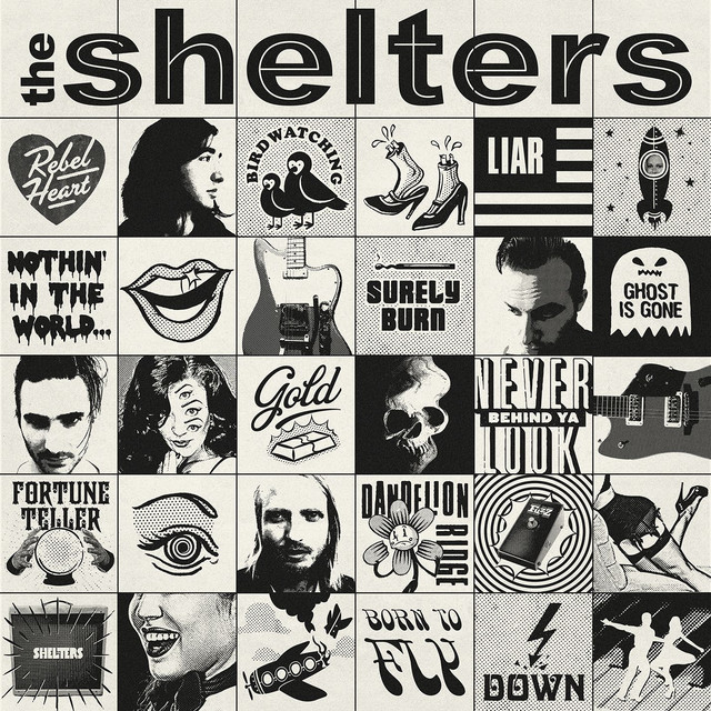 Album cover for The Shelters by The Shelters