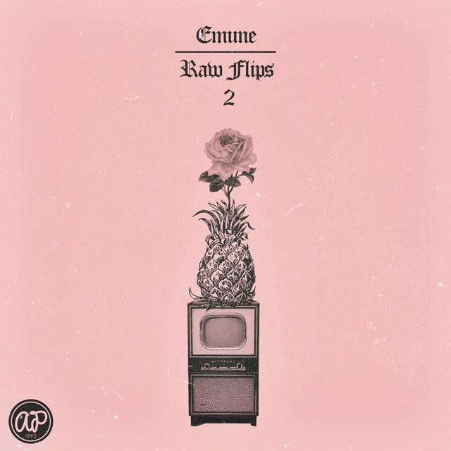 Album cover for Raw Flips 2 (Instrumentals) by emune
