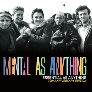 Essential as Anything (30th Anniversary Edition) [Audio Version]