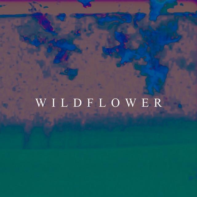 King Kuda - Wildflower image cover