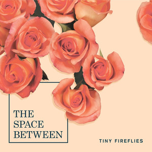 Album cover for The Space Between by Tiny Fireflies