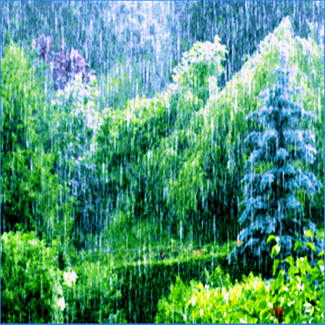 The Living Forest Rain (Loopable Audio for Ambiance, Meditation, Insomnia, and Restless Children) Albumcover