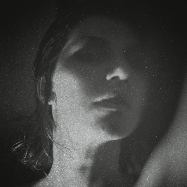 Album cover for Party by Aldous Harding