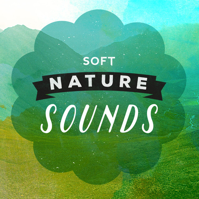 Soft Nature Sounds Albumcover