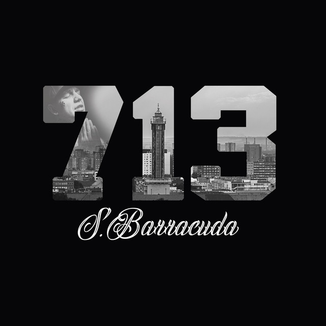 Album cover for 713 by S.Barracuda