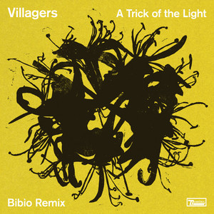 A Trick of the Light (Bibio Remix)